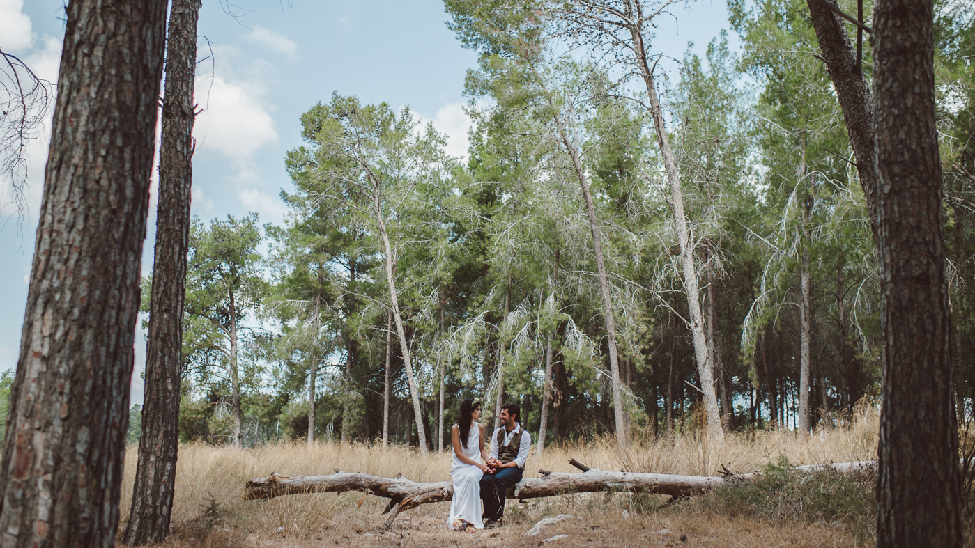 bride and groom sitting on tree branch