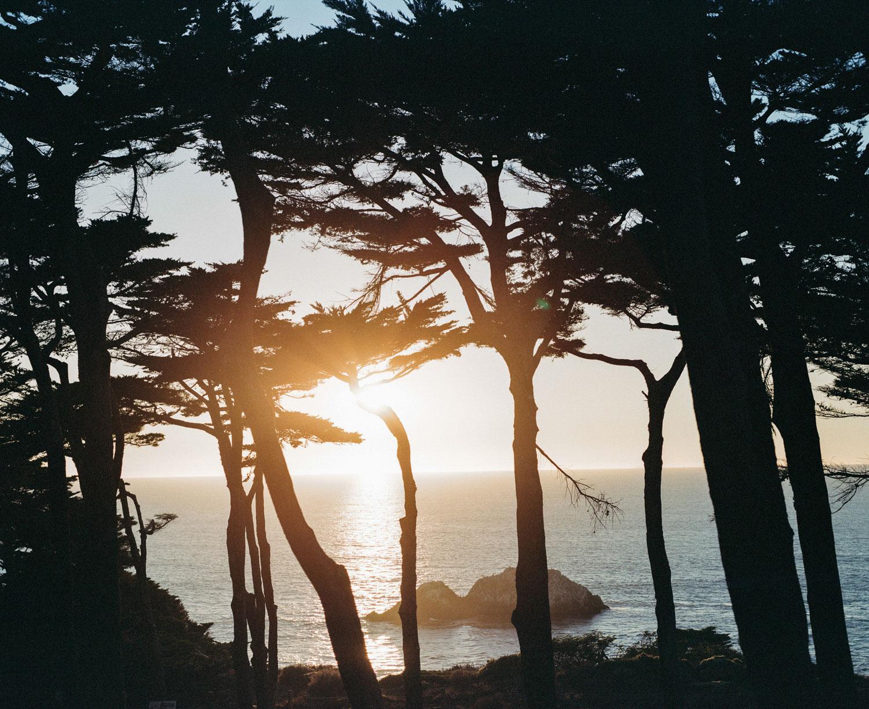 san fransisco beach sunset through trees