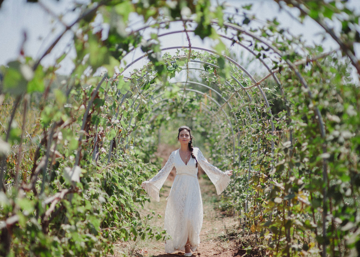 bride in golan heights winery